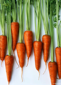 Carrots01Copy