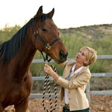 Bonding With Horse - Equine Therapy - Rosewood Centers For Eating Disorders
