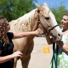 Building Trust With Horse - Equine Therapy - Rosewood Centers For Eating Disorders