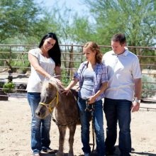 Family Connecting With Miniature Horse - Equine Therapy - Rosewood Centers For Eating Disorders