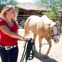 Girl Leading Horse - Equine Therapy - Rosewood Centers For Eating Disorders