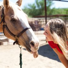 Horse Sticking Tounge Out - Equine Therapy - Rosewood Centers For Eating Disorders