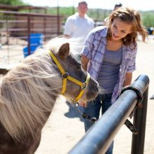 Young Patient Communicating With Horse - Equine Therapy - Rosewood Centers For Eating Disorders