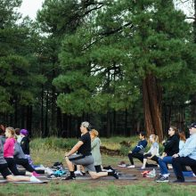 Rosewood Centers for Eating Disorders 2015 Alumni Reunion Group Yoga